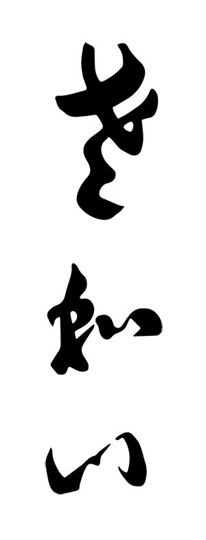 logo_sawai